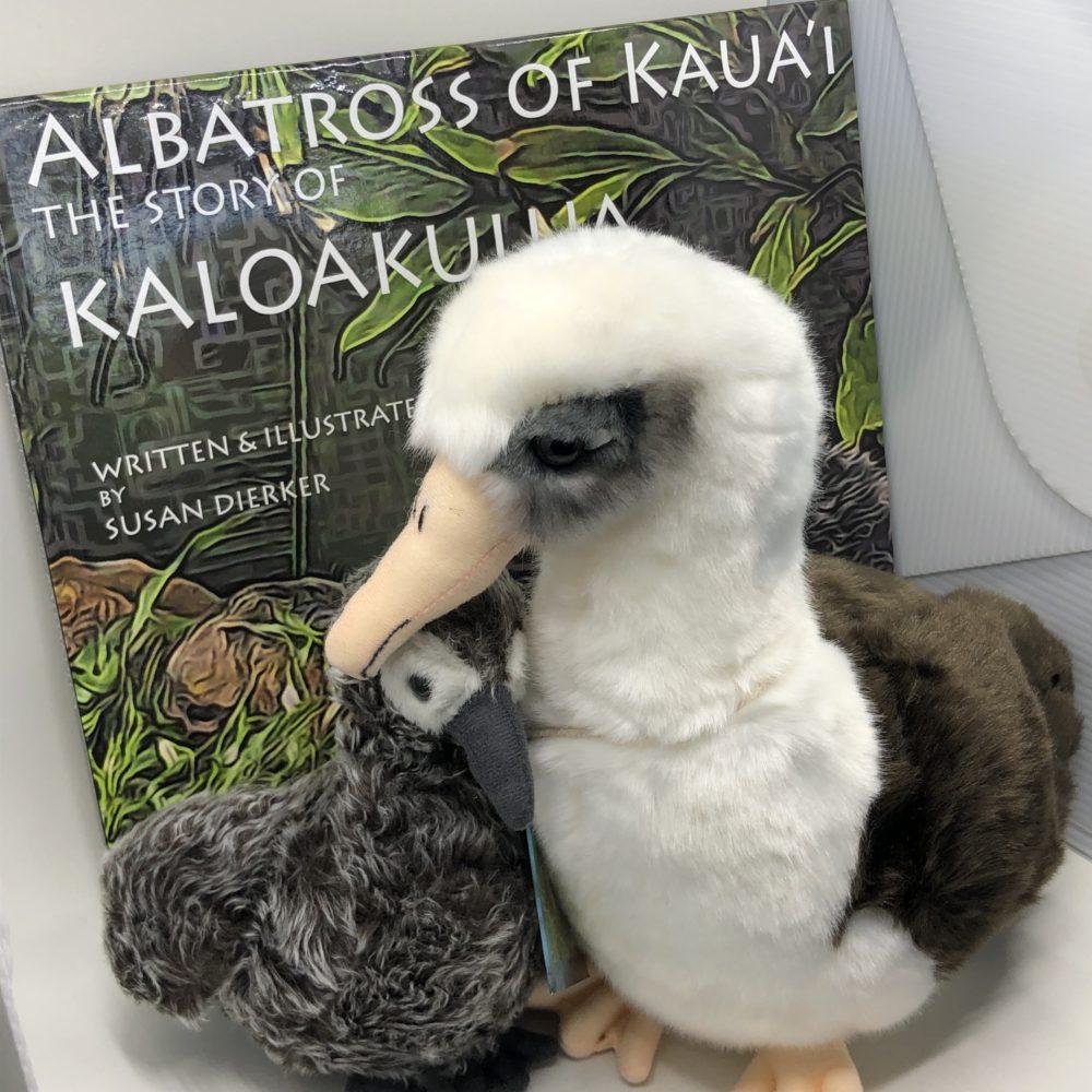 albatross of kauai