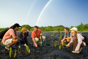 tour group examines lava rock